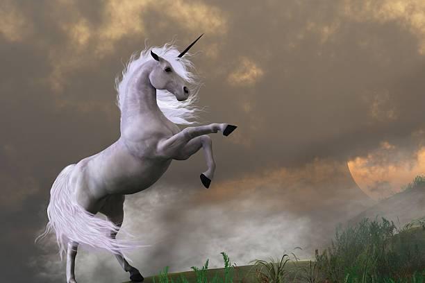 Mơ thấy con ngựa có điềm báo gì?