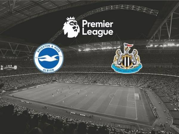 Nhận định Brighton vs Newcastle, 00h00, 21/07 - Ngoại Hạng Anh